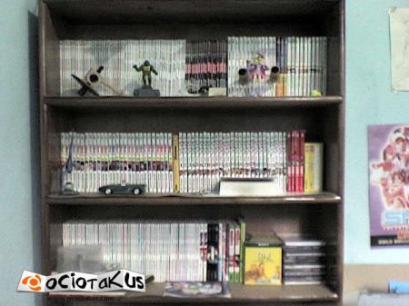 Colección de mangas