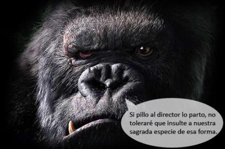 King Kong Enojado